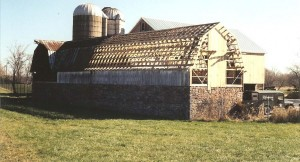 Loafing Shed During Construction Showing Over 30 New Trusses and Siding