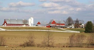 A More Picturesque Farm Is Hard to Imagine
