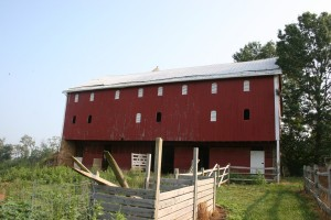 Barnyard Side Before Construction
