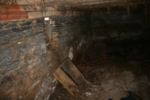 The Basement Was Full of Debris, Plant Growth, and Collapsed Building Materials.