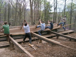It's A Simple Matter To Roll A Huge Log For The Next Pass -- Just Need More Weight