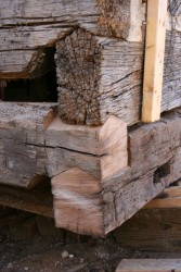 We've used salvaged material to replace the logs too deteriorated for continued service.