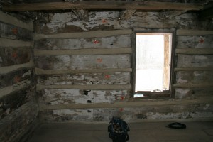 Interior chinking under way.  The log walls will remain exposed to the inside when the building is complete.